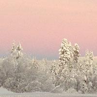 Winter light in Sweden