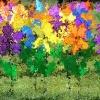 Alzheimer Walk Flowers